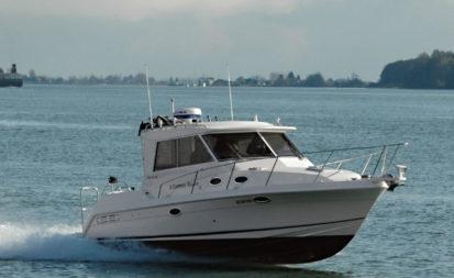 Monaro 298 DX