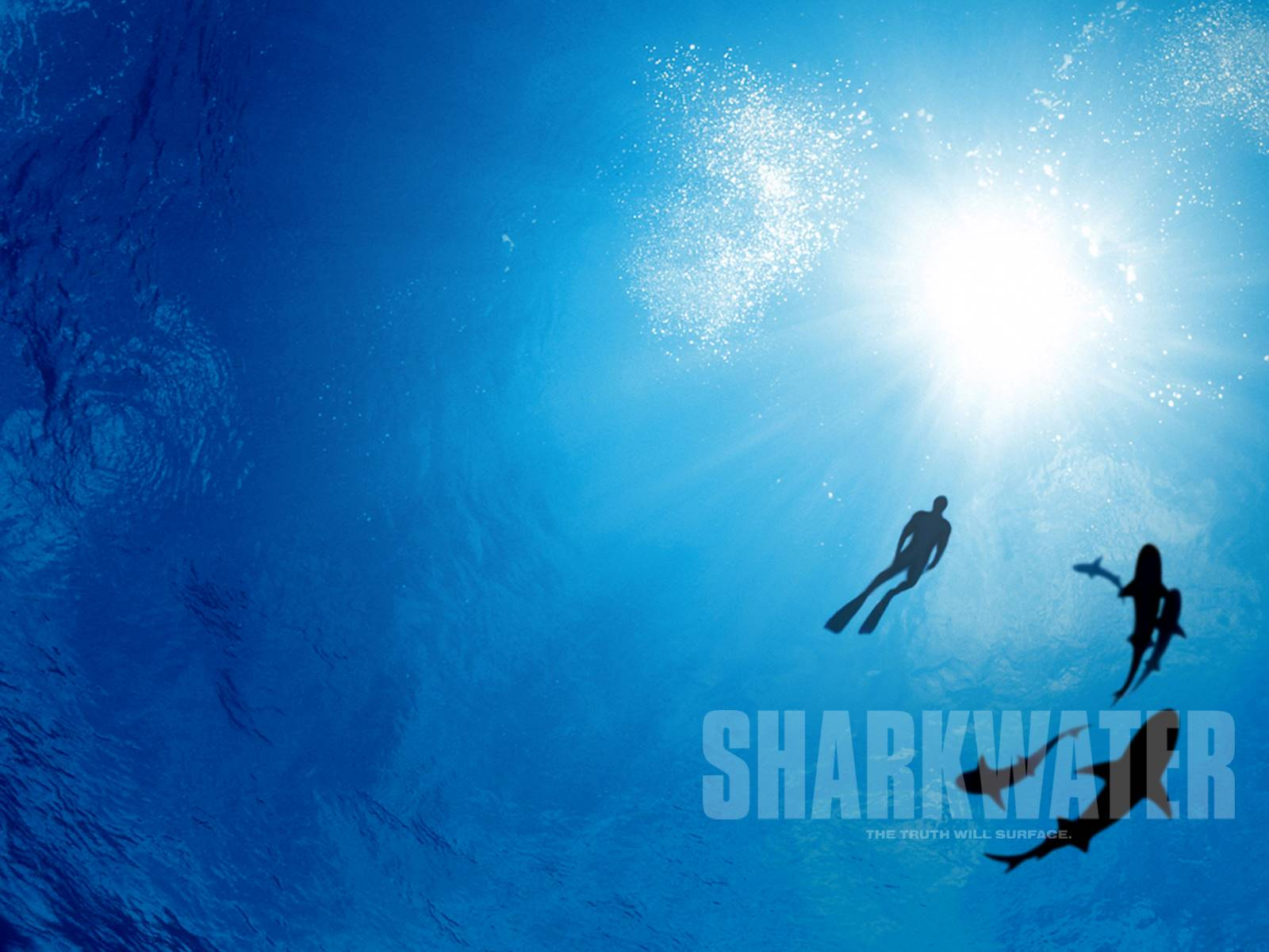 Sharkwater Poster